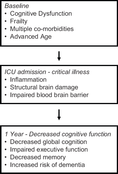 Figure 1: Important elements in the development of delirium after ICU admission (Adapted from Rengel KF, <b>et al</b>. Anesth Analg 2019;128:772-80)<sup>[4]</sup>
